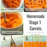 homemade organic baby food carrots